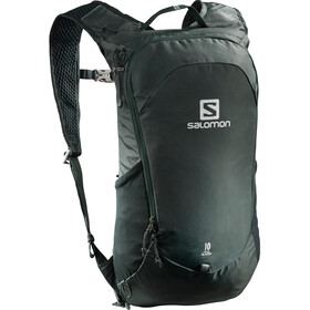 Salomon Trailblazer 10 Backpack green gables
